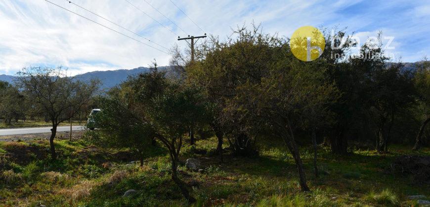 LOTE DE 3393m2 SOBRE AV. LOS MANDARINOS, EN CARPINTERÍA