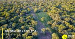 LOTES DE 1400MTS EN CARPINTERIA