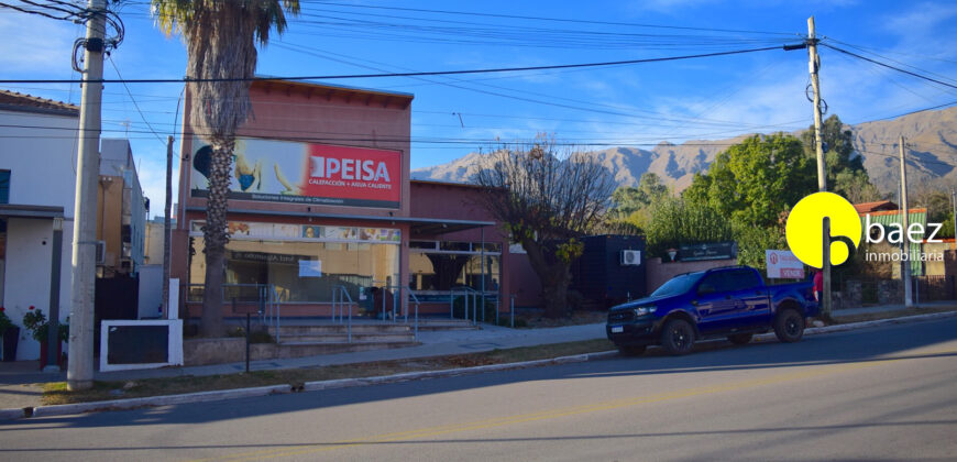 CASA + 2 LOCALES EN AV. DEL SOL